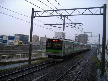 20111119kodurusinden1521satooi.jpg