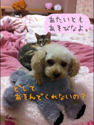 縺ゅ◎縺シ縺・€・convert_20120313204327