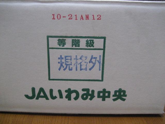 西条柿 003