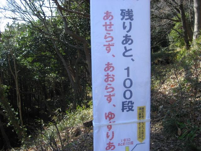 吾妻山公園 005