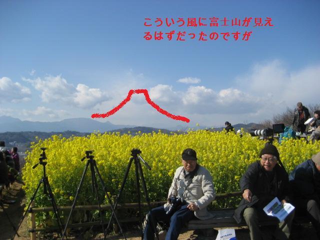 吾妻山公園 018
