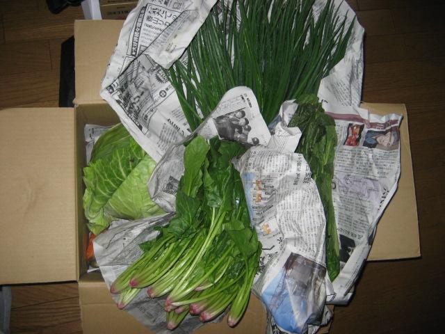 島根の野菜