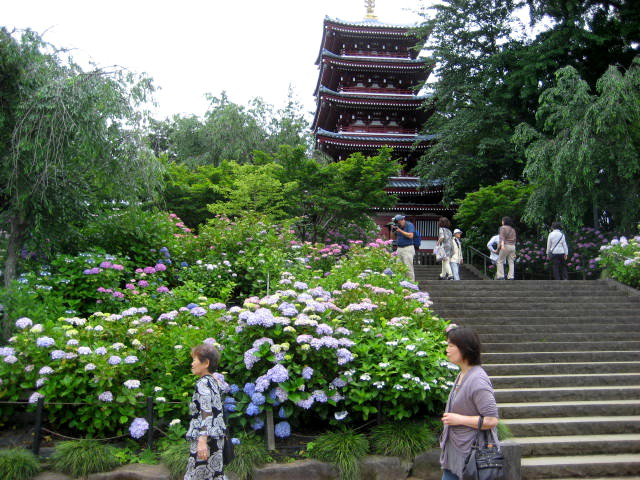 本土寺 002