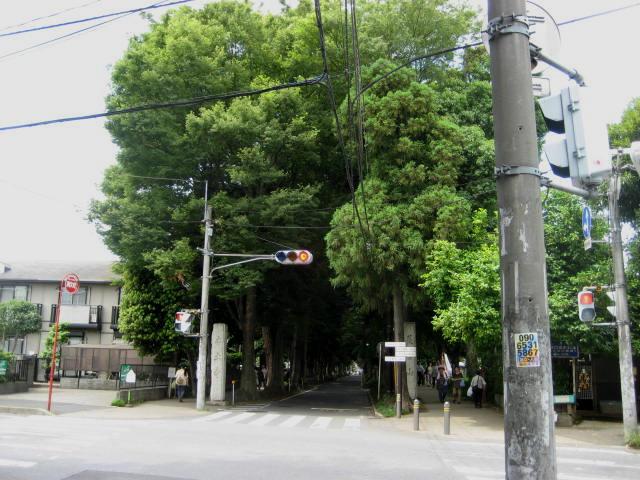 本土寺 0011