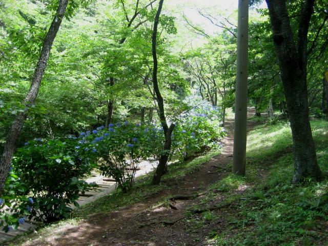 弘法山 010