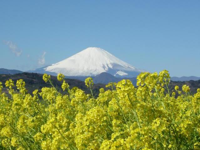 Azumayamakoen_observatory_convert_20110126202015.jpg