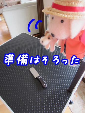 2_20130308120624.jpg