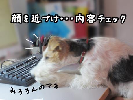 2_20130320170608.jpg