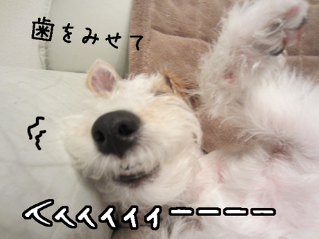 3_20130124151623.jpg