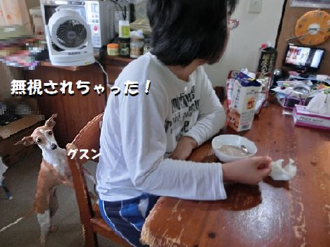 c_20140922212543260.jpg