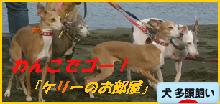 itabana3_20140928005537ef5.png