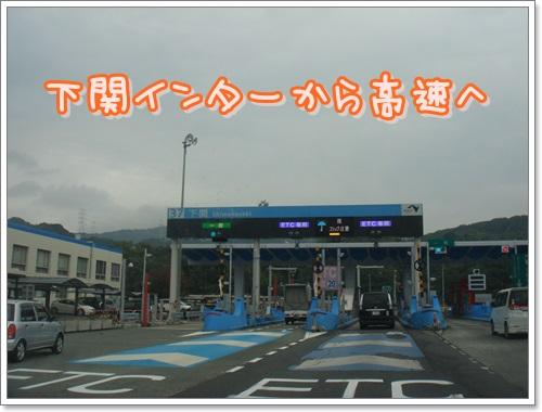 DSC02671.jpg