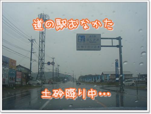 DSC02702.jpg