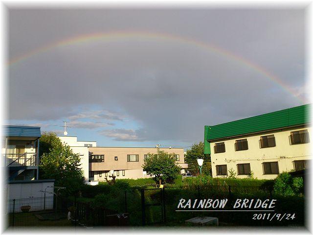 虹の橋0924