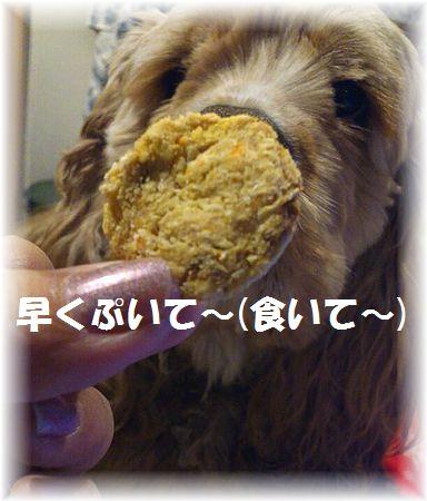 コニー人参クッキー