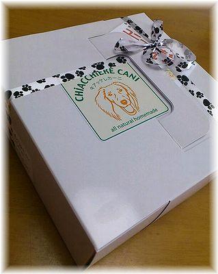 キアッケレカーニ誕生日ケーキ