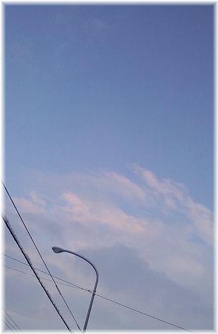 青空雪の合間の・・・