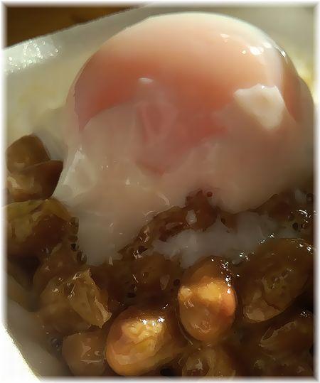 温玉納豆20日