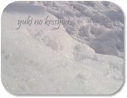 雪の結晶24ブログ