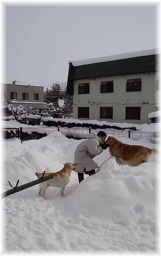 5日雪庭でレトリーバーズとノブ・雪山