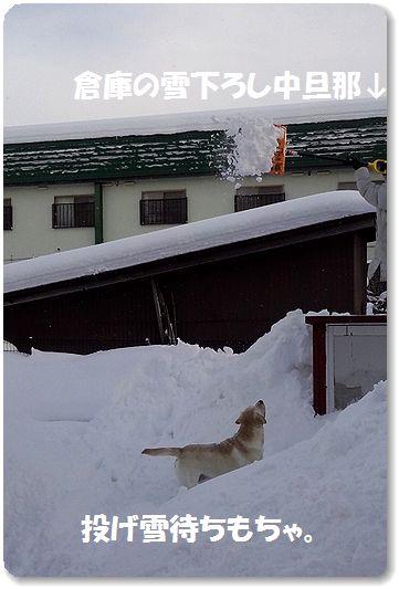 12日もち。雪下ろし遊び