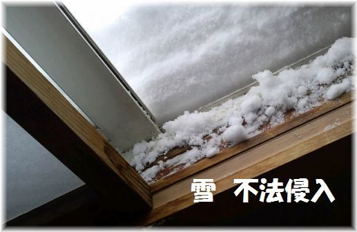 13日仏間に不法侵入雪