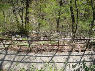 201005046.jpg