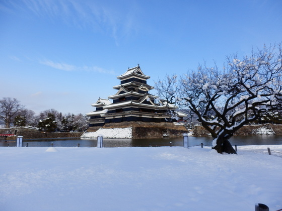 松本城 (76)