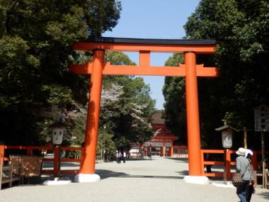 京都 (41)