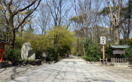 京都 (42)
