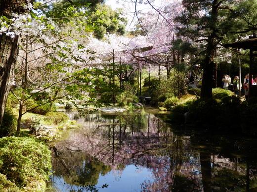 京都 (9)