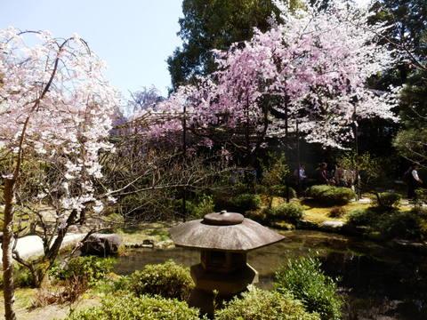 京都 (10)