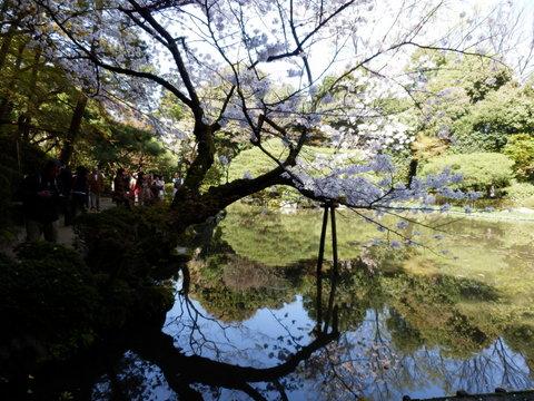 京都 (21)
