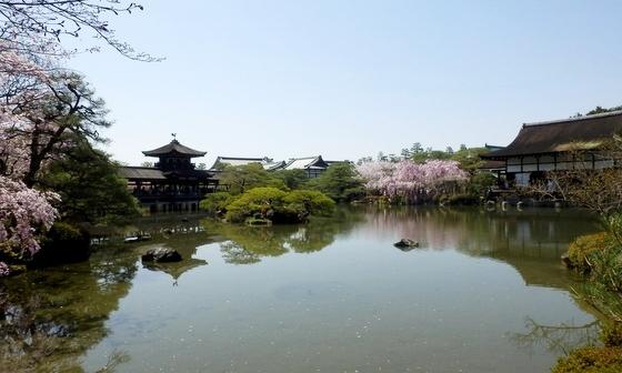 京都 (31)