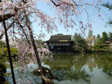 京都 (32)