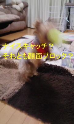 DVC00059.jpg