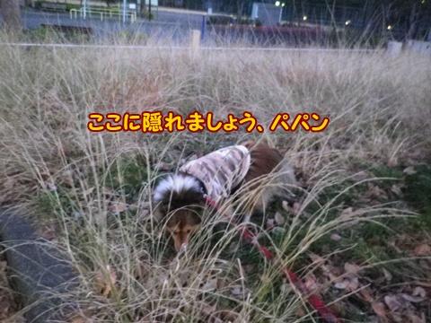 20121221_2.jpg