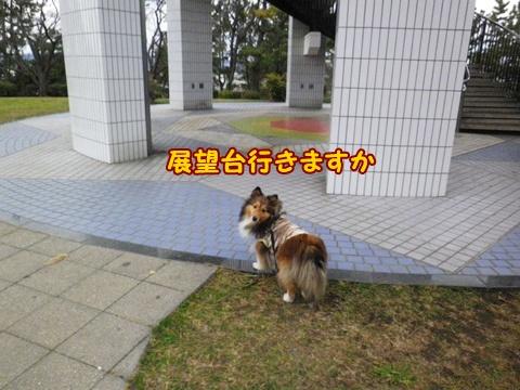 20121223_10.jpg