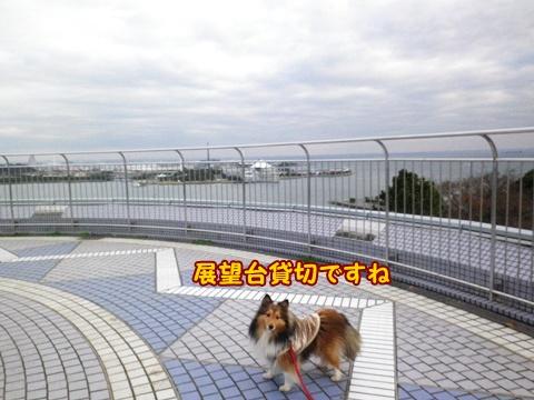 20121223_1_3.jpg