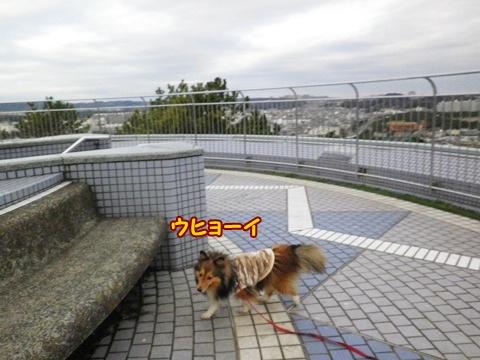 20121223_1_4.jpg
