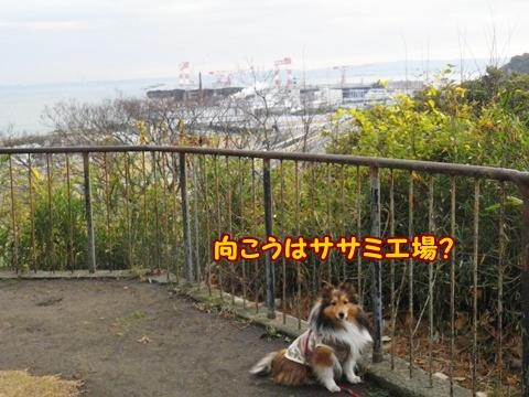 20121223_2_1.jpg
