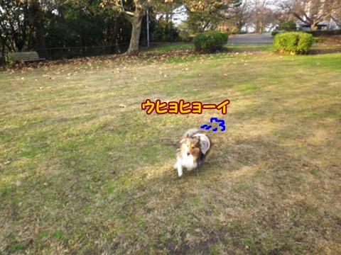 20121223_2_2.jpg