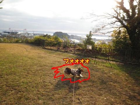 20121223_2_3.jpg