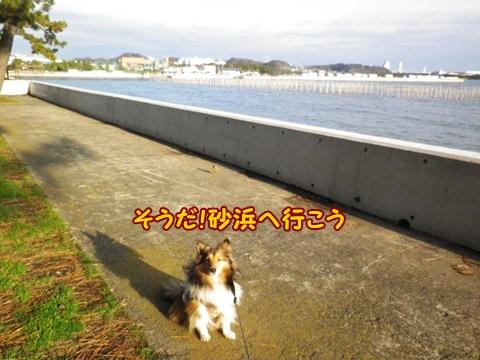 20121223_2_6.jpg