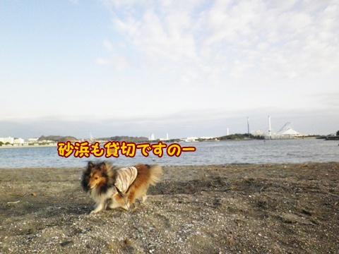 20121223_2_7.jpg