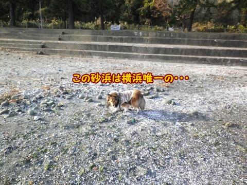 20121223_2_8.jpg