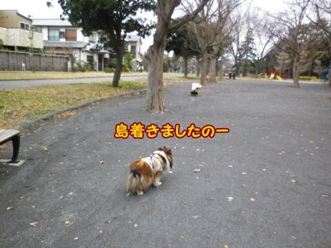 20121223_4.jpg