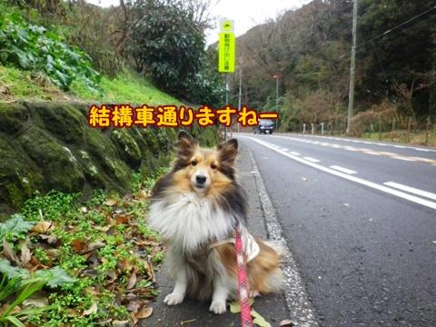 20121229_6.jpg