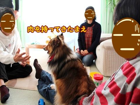 20130101_5.jpg