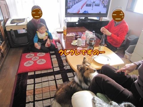 20130103_6.jpg